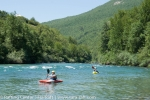 tararaft_kayaking-17