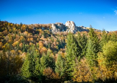 Zelengora - Sutjeska, BIH - October 2015.